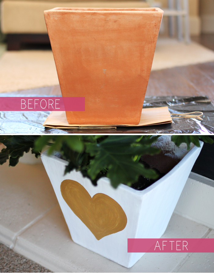 potted plant diy