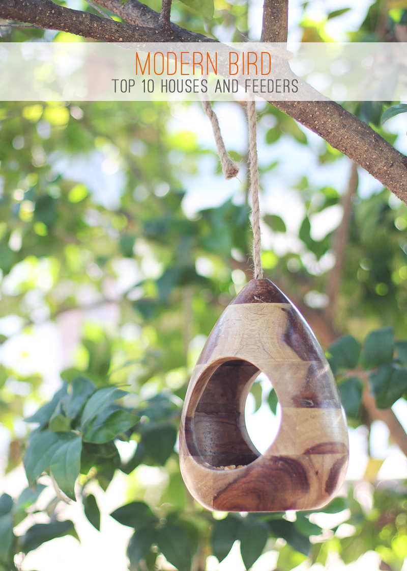 Modern Birds: A list top 10 bird houses and feeders in high/low budget ranges
