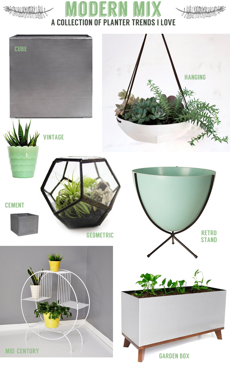 modern mix: a collection of planter trends #plants #garden #spring